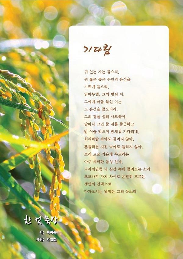 74호_한컷묵상.JPG
